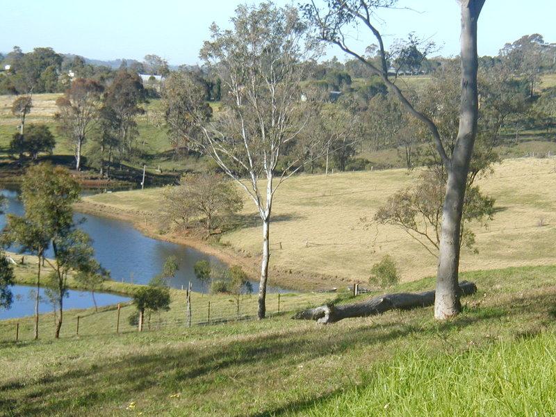 225 Bobs Range Road, Orangeville, NSW 2570
