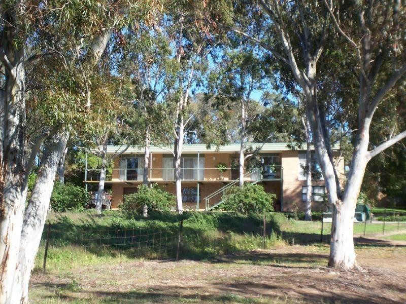 Amarillo Temora Road, Cootamundra, NSW 2590
