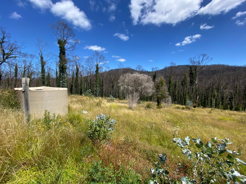 Lot 2 Devils Hole Road, Wyndham, NSW 2550