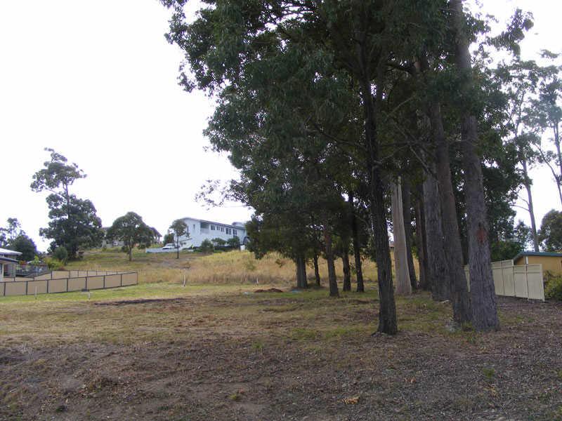 17  Hilltop Parkway, Tallwoods Village, NSW 2430