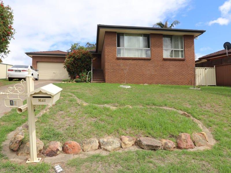 12 Woollybutt Way, Muswellbrook, NSW 2333