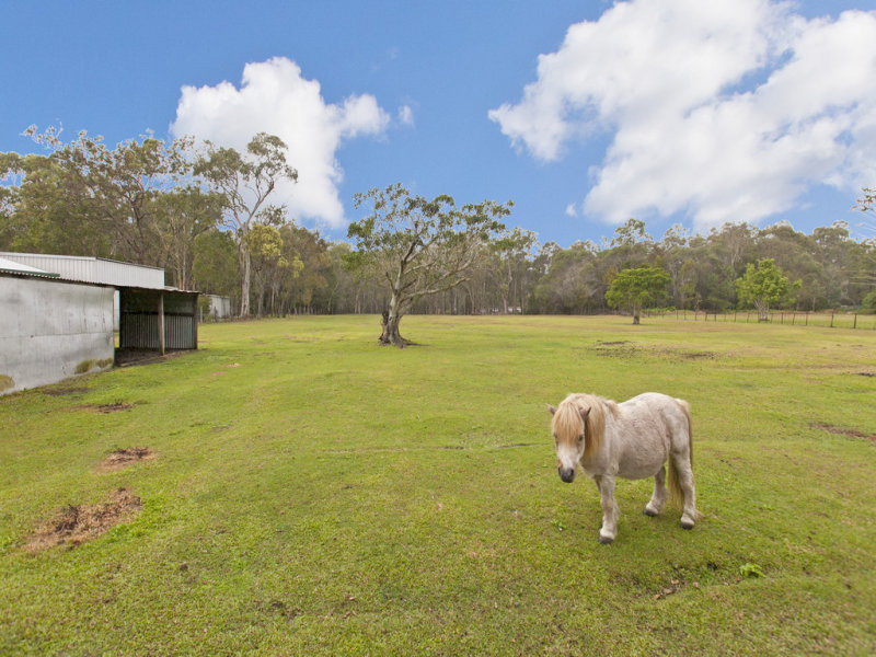 163 Chelsea Road, Ransome, Qld 4154