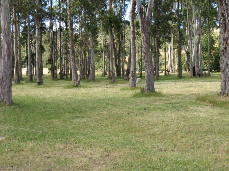423A Melrose Road, Eugenana, Tas 7310