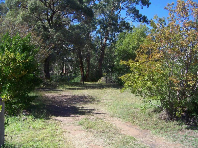 17 Nelson St, Coonabarabran, NSW 2357