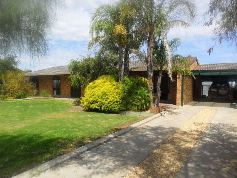 37 and 39 Murrayville Rd, Pinnaroo, SA 5304