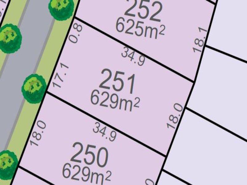 Lot 251, Vine St, Chisholm, NSW 2322