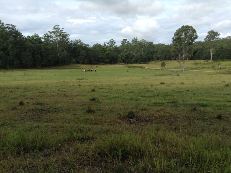 Lot 53 Upper Fine Flower Rd, Upper Fine Flower, NSW 2460