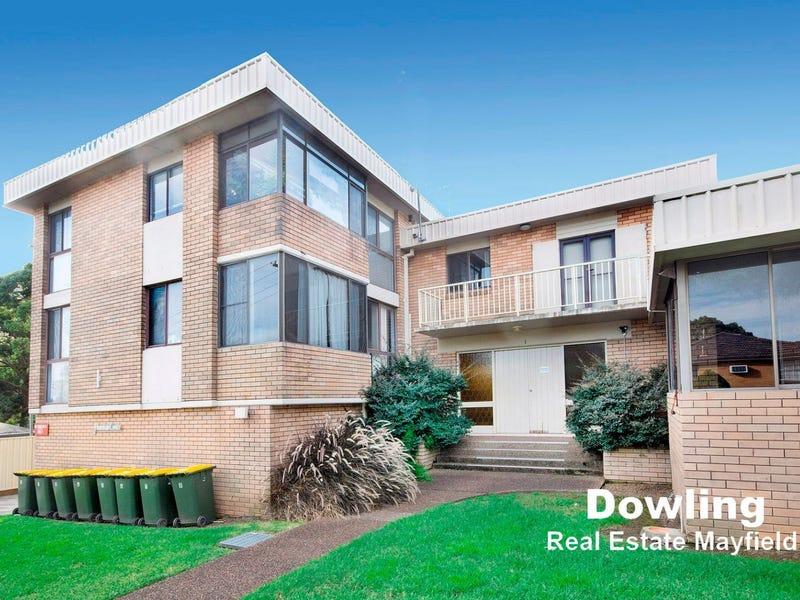 8/1 Harvard Close, Jesmond, NSW 2299