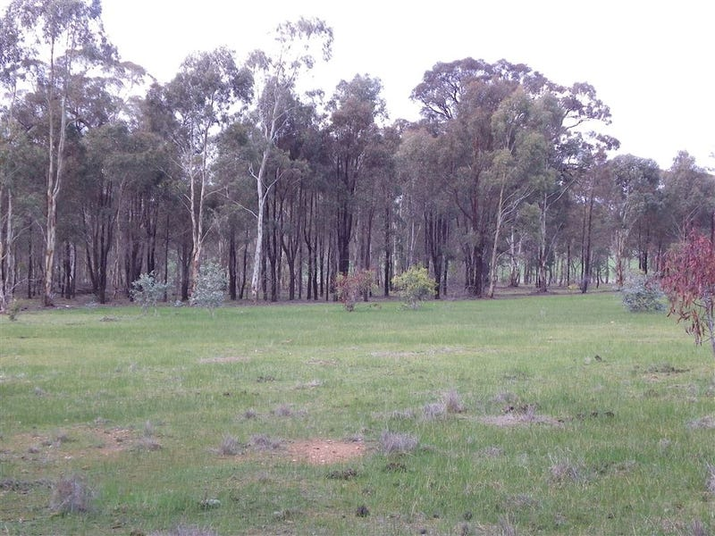 CA19 Bendigo - Maryborough Road, Shelbourne, Vic 3515