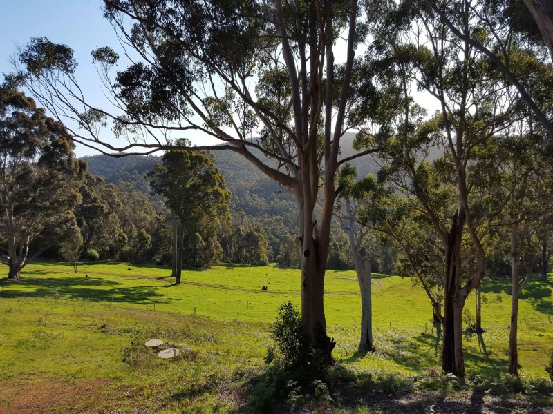 Lot 64 Myers Road, Denmark, WA 6333