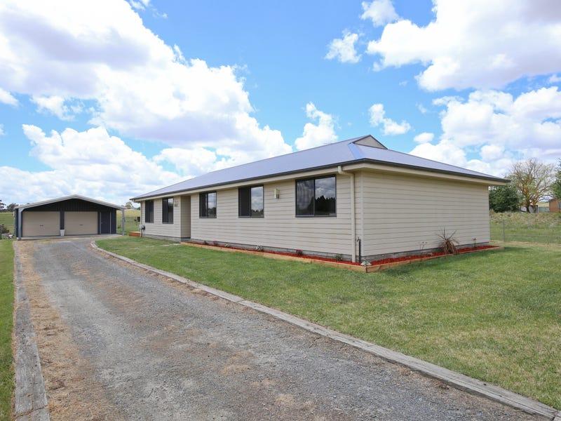 19 NORTH LANE, FOREST REEFS, Orange, NSW 2800