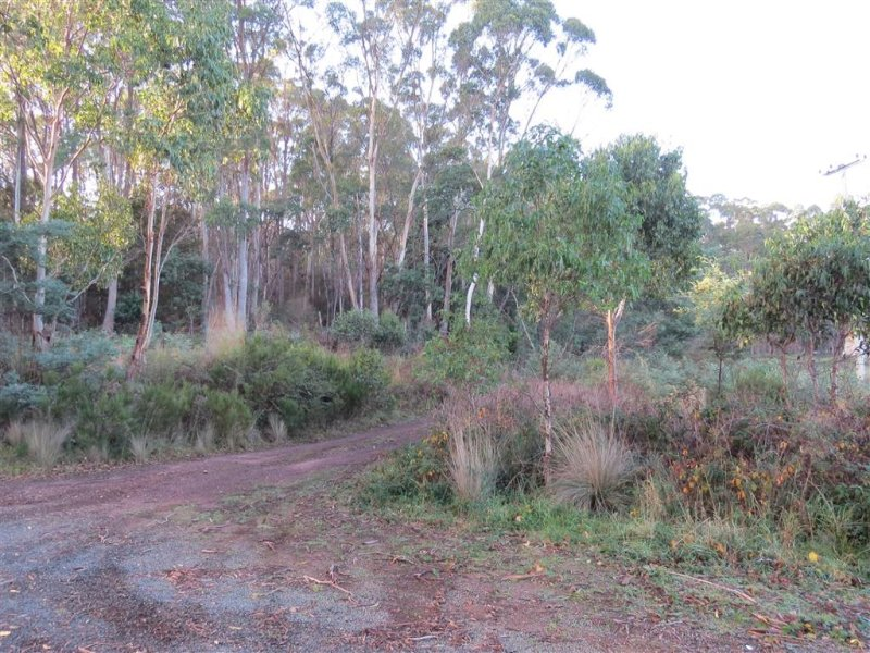 . Youngmans Road, Railton, Tas 7305