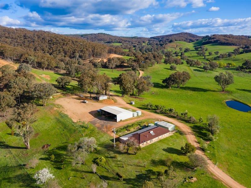 468 Vokins Creek Road, Holbrook, NSW 2644