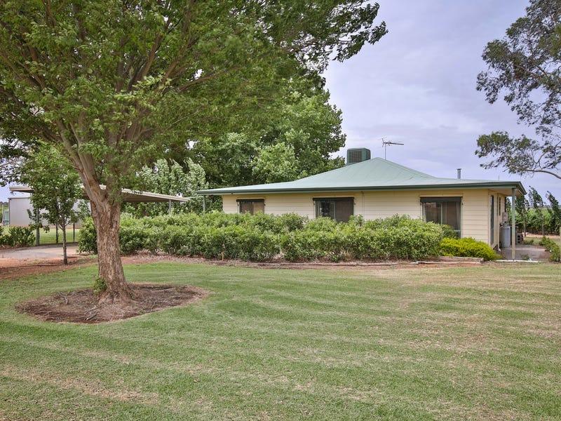 410 Gunya Road, Coomealla, NSW 2717