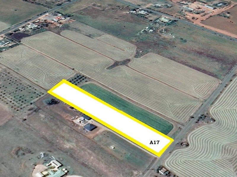 Allotment 17 Acropolis Road, Nelshaby, SA 5540