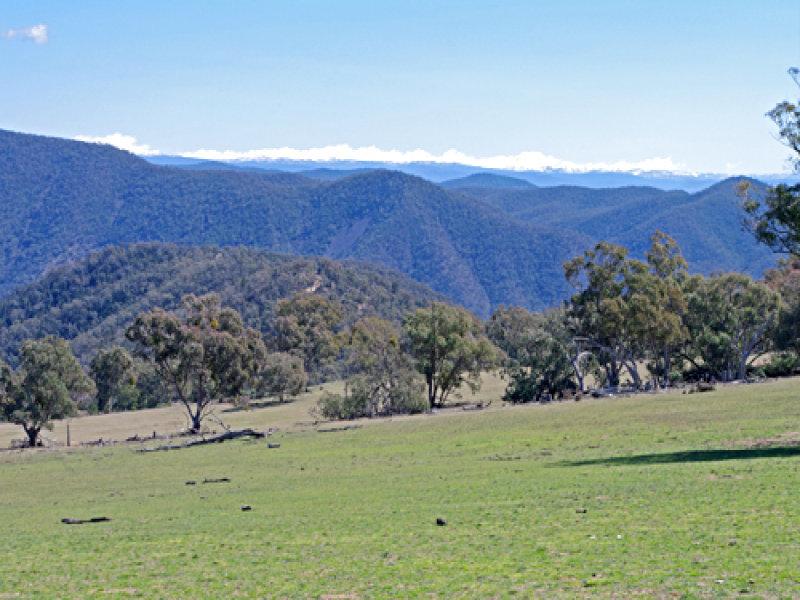 Snodgrass, Delegate, NSW 2633