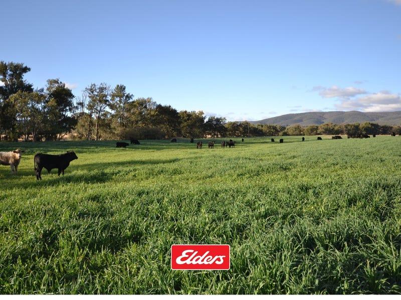 1544 GEORGES CREEK ROAD, Bundarra, NSW 2359