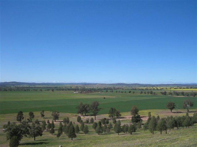 238 Gap Road, Grenfell, NSW 2810