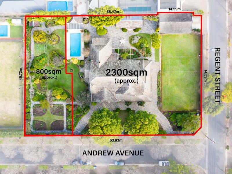 17 Andrew Avenue, Millswood, SA 5034