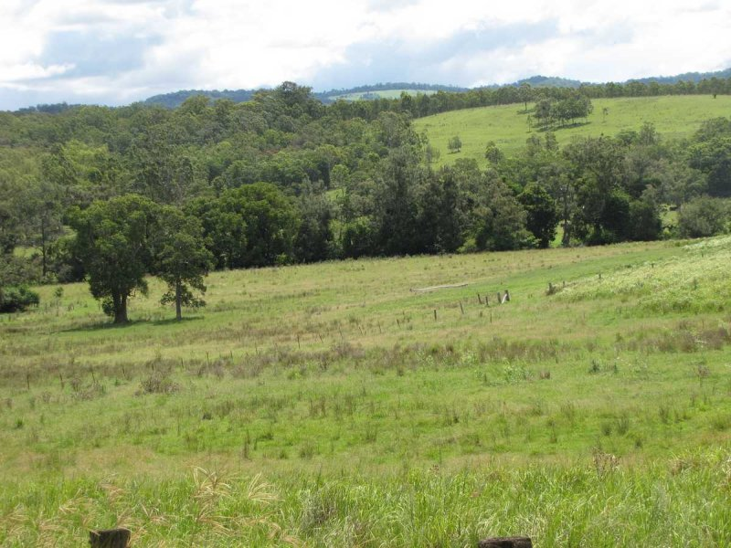 975 Dyraaba Rd, Dyraaba, NSW 2470