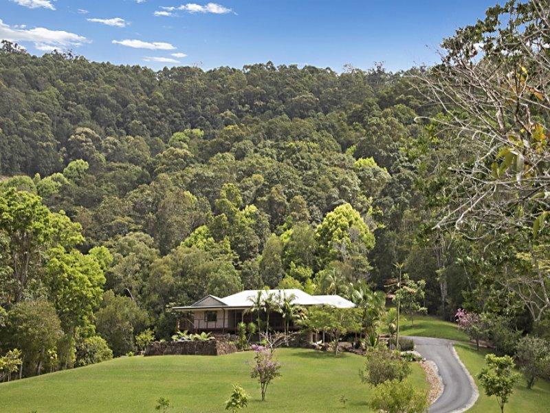 615 Nobbys Creek Road, Nobbys Creek, NSW 2484