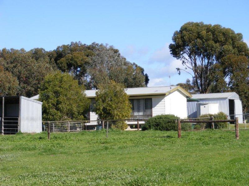 46 Punjum Road, Mundulla, SA 5270