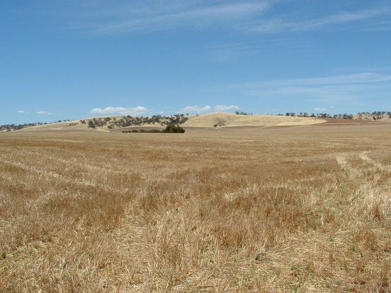 * Herds Hill Road, Hoyleton, SA 5453