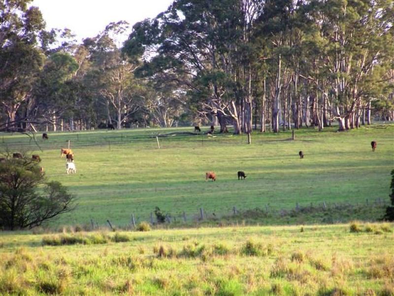 419 Parma Road, Parma, NSW 2540