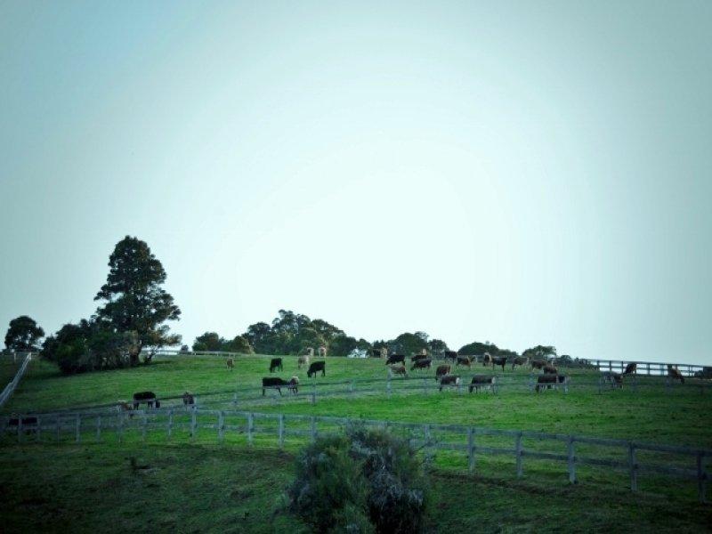 2179 Kangaloon Road, East Kangaloon, NSW 2576