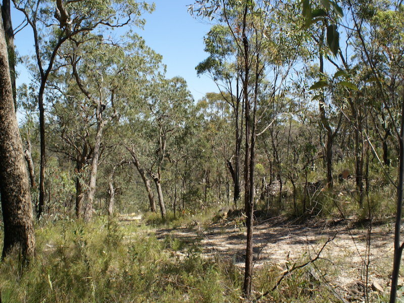 22, PUTTY ROAD, Putty, NSW 2330