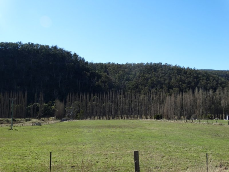 Lot 5 Molesworth Road, Molesworth, Tas 7140