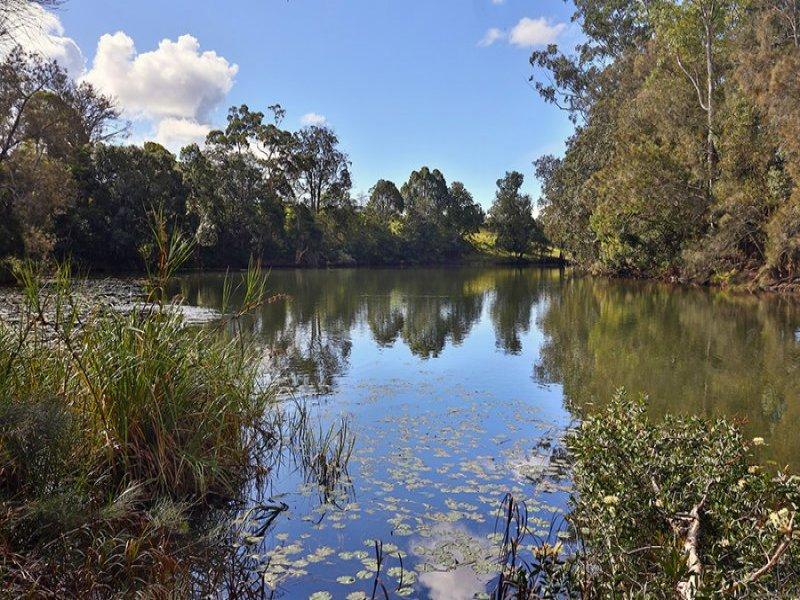 325 Upper Warrell Creek Road, Macksville, NSW 2447