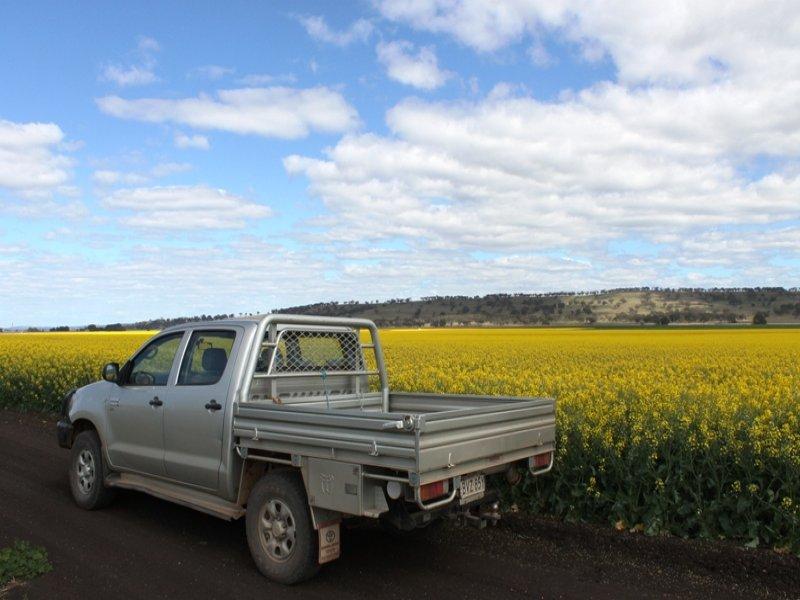Yallambee Rd, Cassilis, NSW 2329