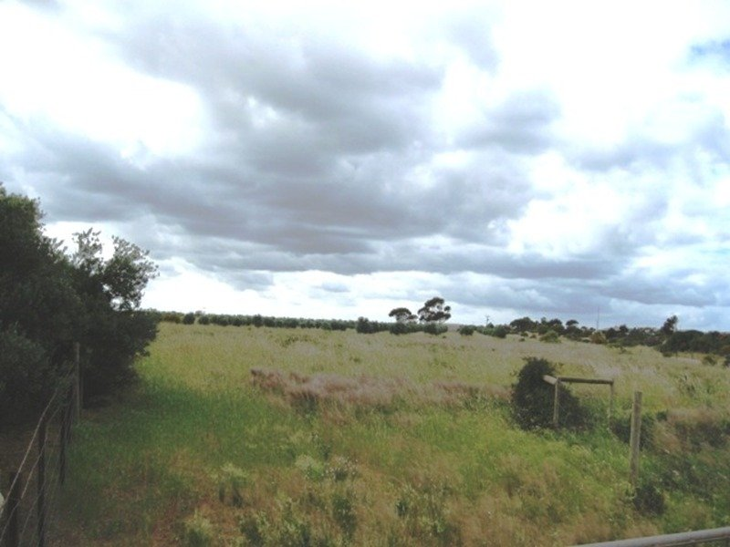 Lot,662 Martin Terrace, Kadina, SA 5554