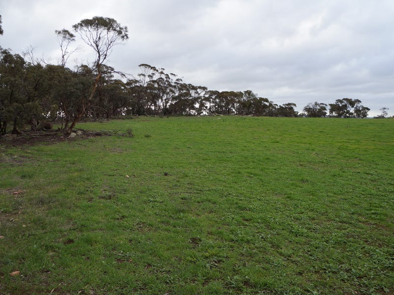 Lot 5 Anders Road, Monarto, SA 5254