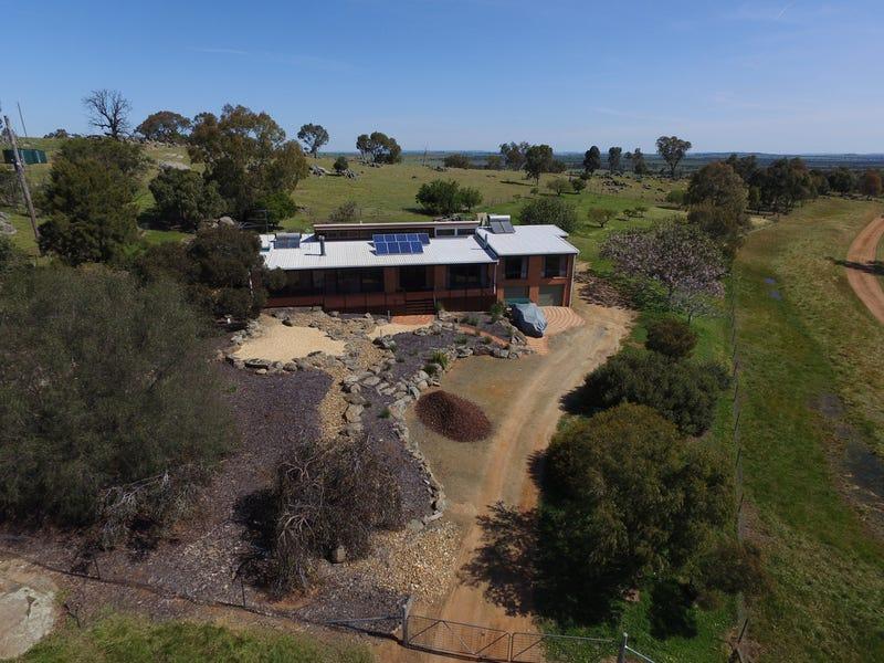 Harefield Pistachios Aerodrome Lane, Wagga Wagga, NSW 2650