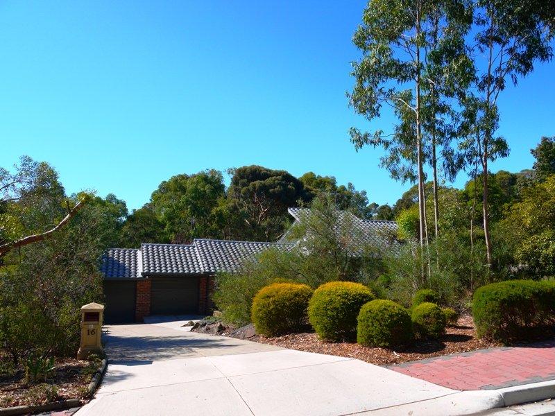 16 Deering Crescent, Banksia Park, SA 5091