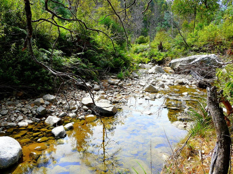 Address available on request, Four Mile Creek, Tas 7215