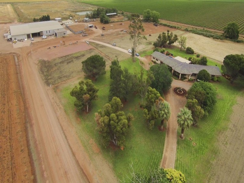 1316 Walla Avenue, Griffith, NSW 2680