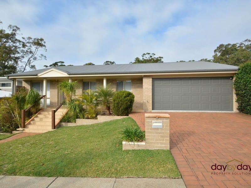 4 Thistle Way, Fletcher, NSW 2287