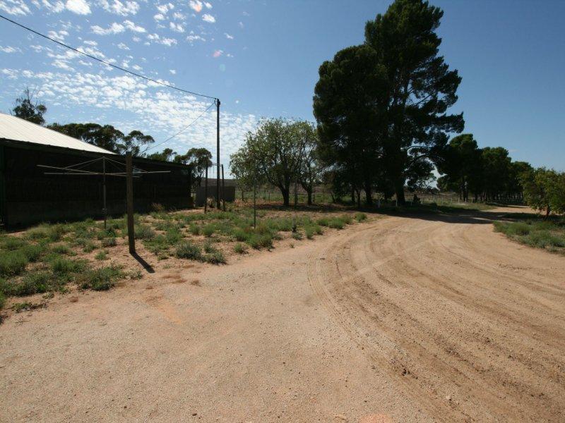 Balaklava Farm, Balaklava, SA 5461