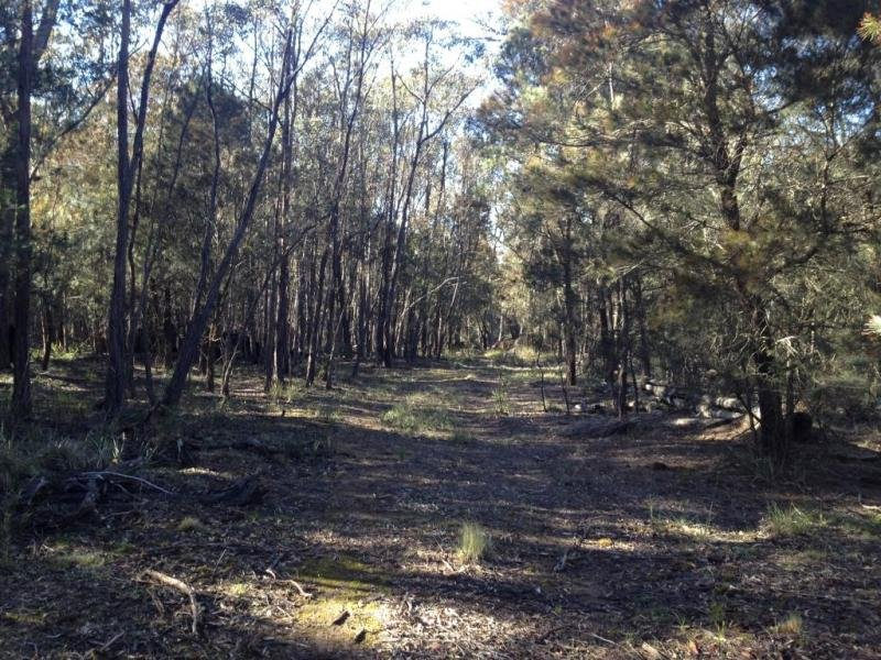 718 Lumley Road, Bungonia, NSW 2580