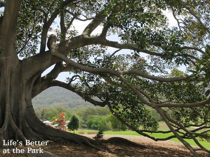 The Vale, Wongawilli, NSW 2530