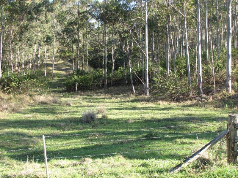 - Muller Roseberry Creek Road, Roseberry Creek, NSW 2474
