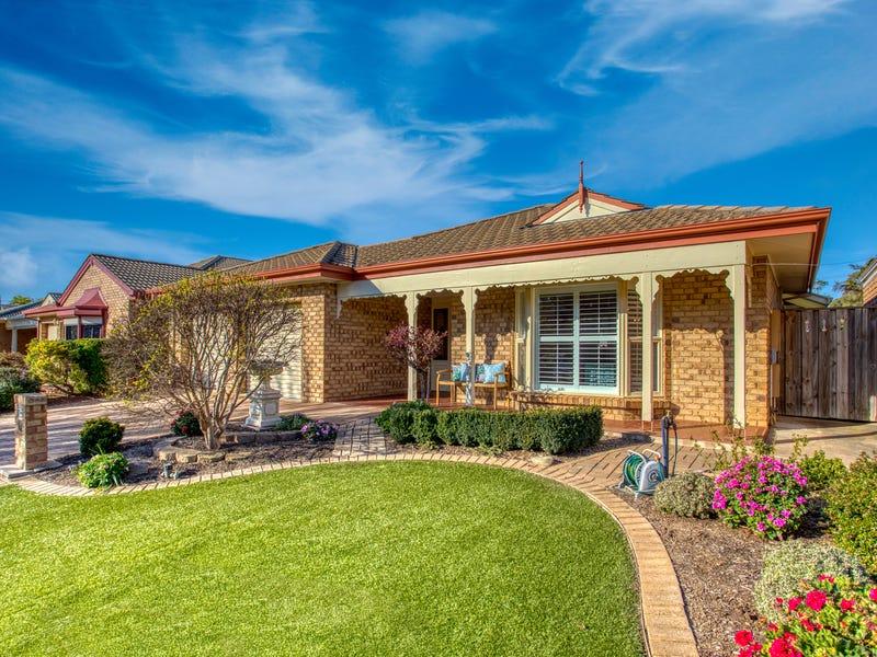 10 Peppertree Grove, Marion, SA 5043