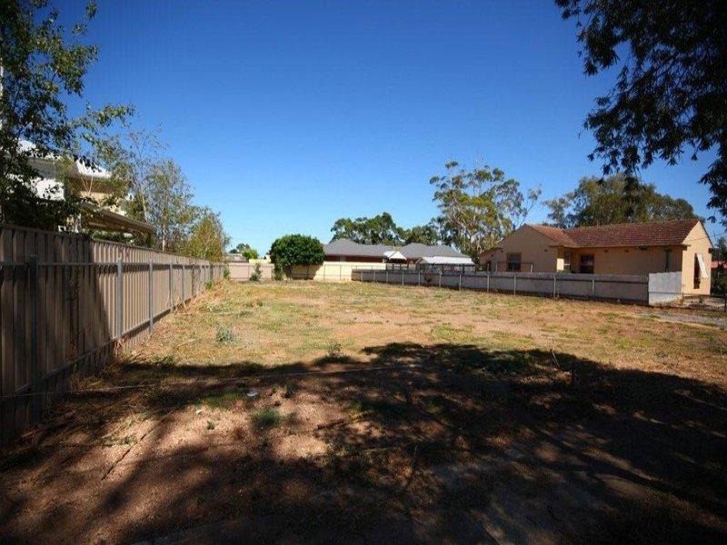 3 Quinn Street, Morphettville, SA 5043