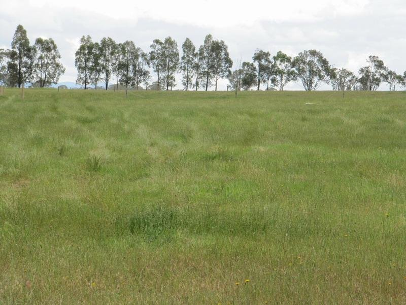 Lot 6, 26 Sandy Creek Road, Maffra, Vic 3860