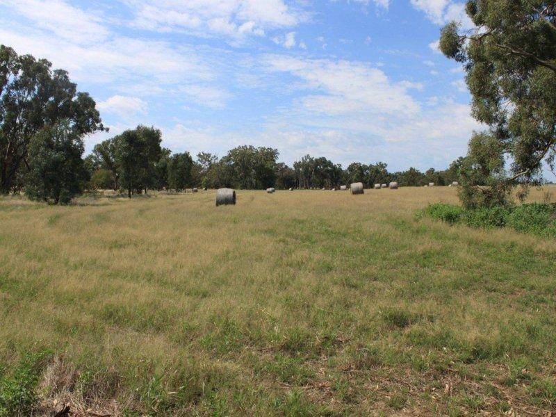 130 Creasys Road, Mangoplah, NSW 2652