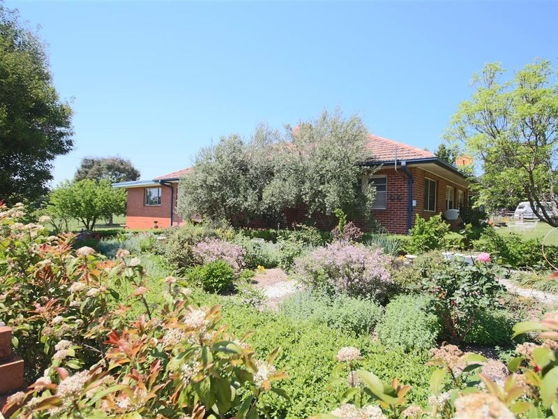 456 Mt Lindesay Road, Tenterfield, NSW 2372