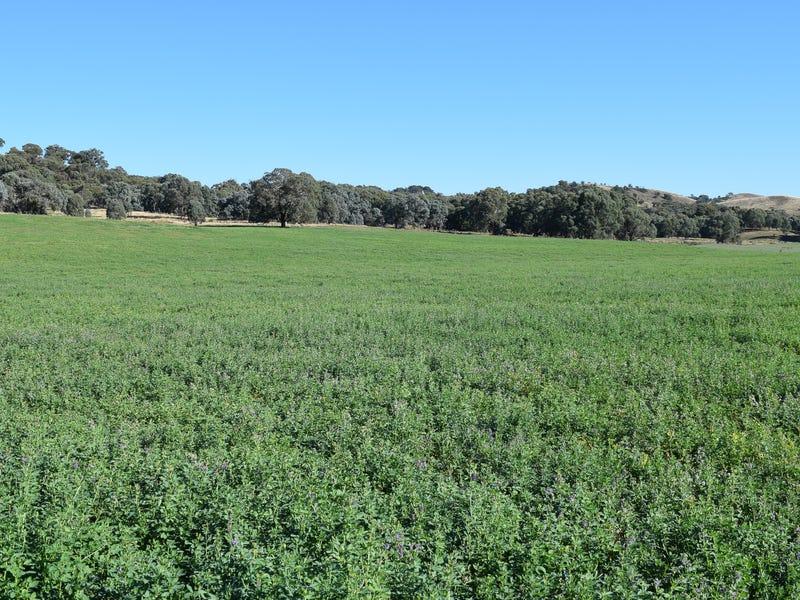 135 Blakney Creek North Road, Blakney Creek, NSW 2581